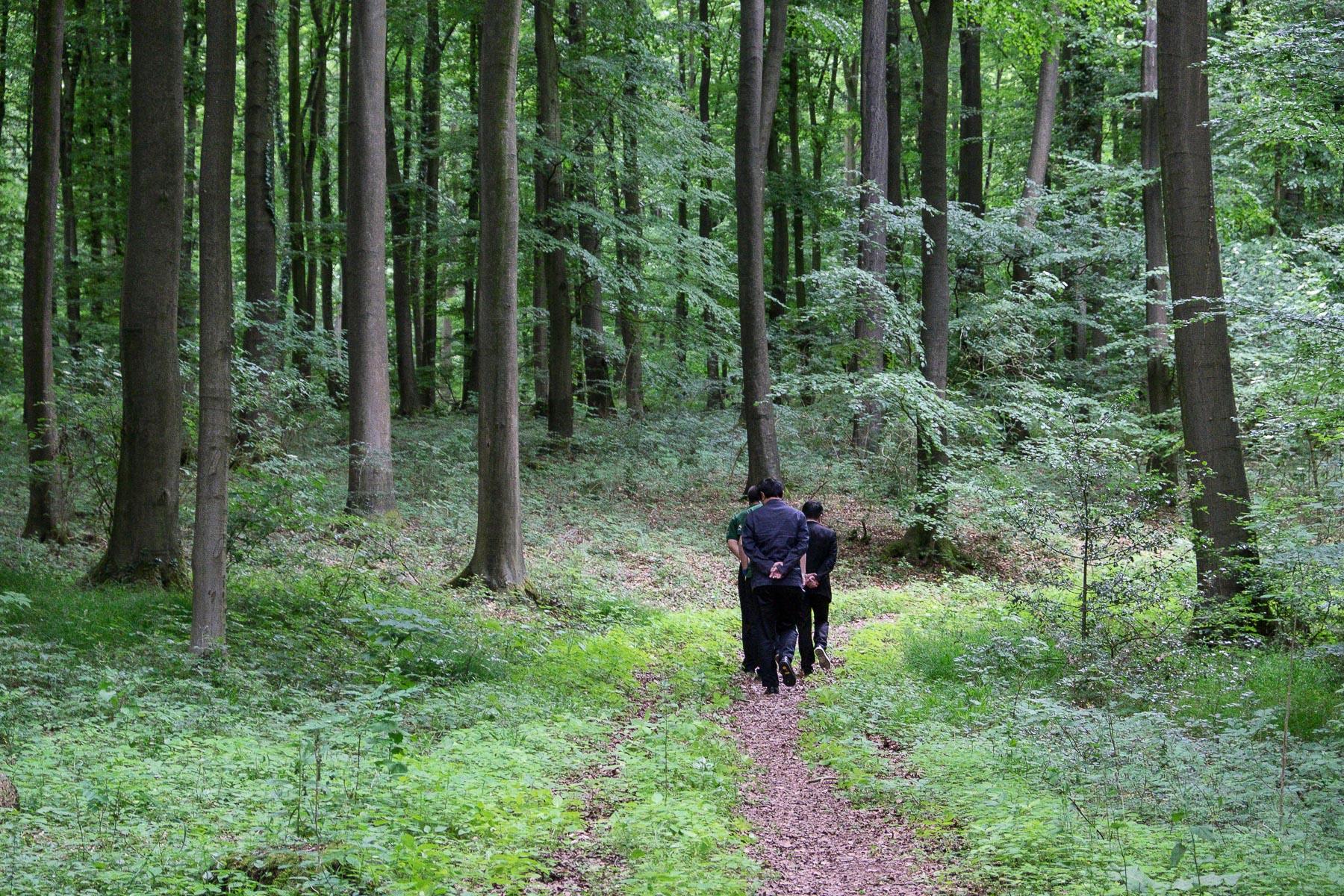 Projekt 16 - 17 Chinesen und ein Deutscher Wald