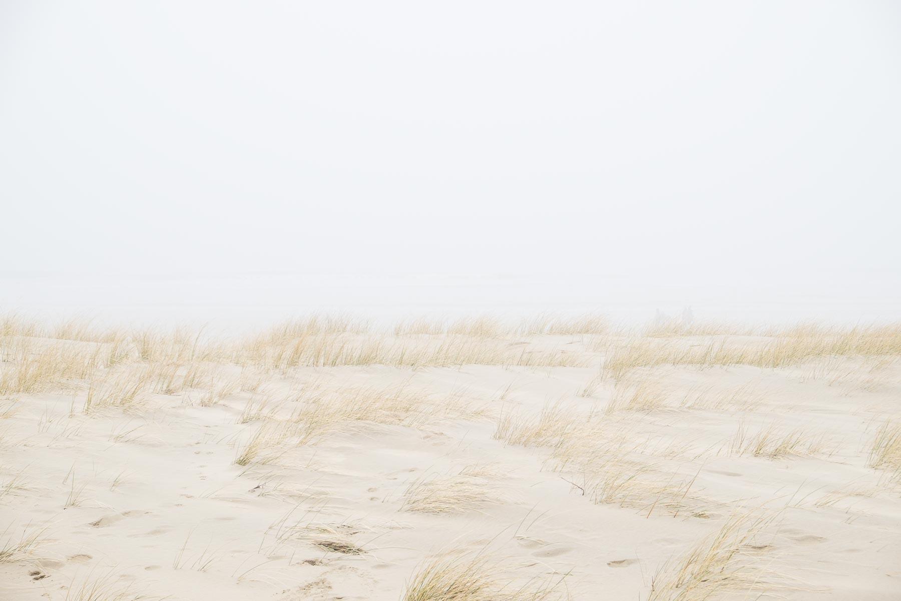 16.02.2015 - Nebel in Egmond aan Zee - Niederlande